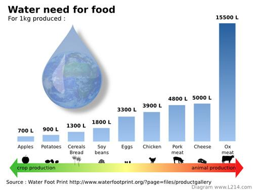Water Need For Food 600X450 0